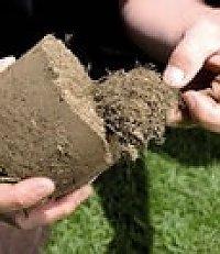 Fertilizantes Granulados Standard